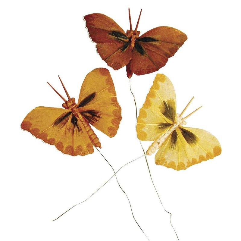 3 Federschmetterling  braun - gelb