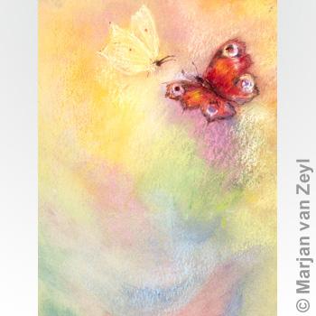 Postkarte Schmetterlingswelt