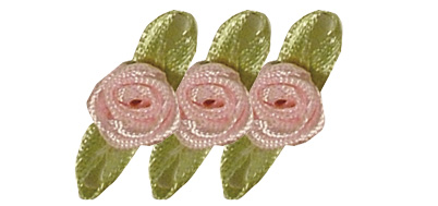 Satinröschen in Rose
