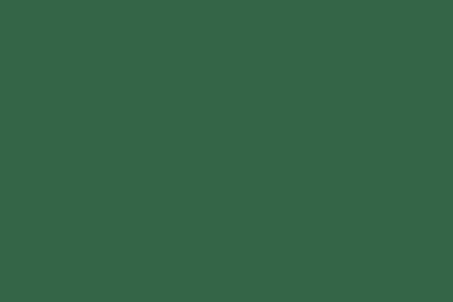 Bastelfilz / Filz Grasgrün