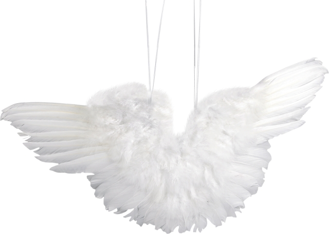 Engelsflügel 20 cm aus weißen Federn
