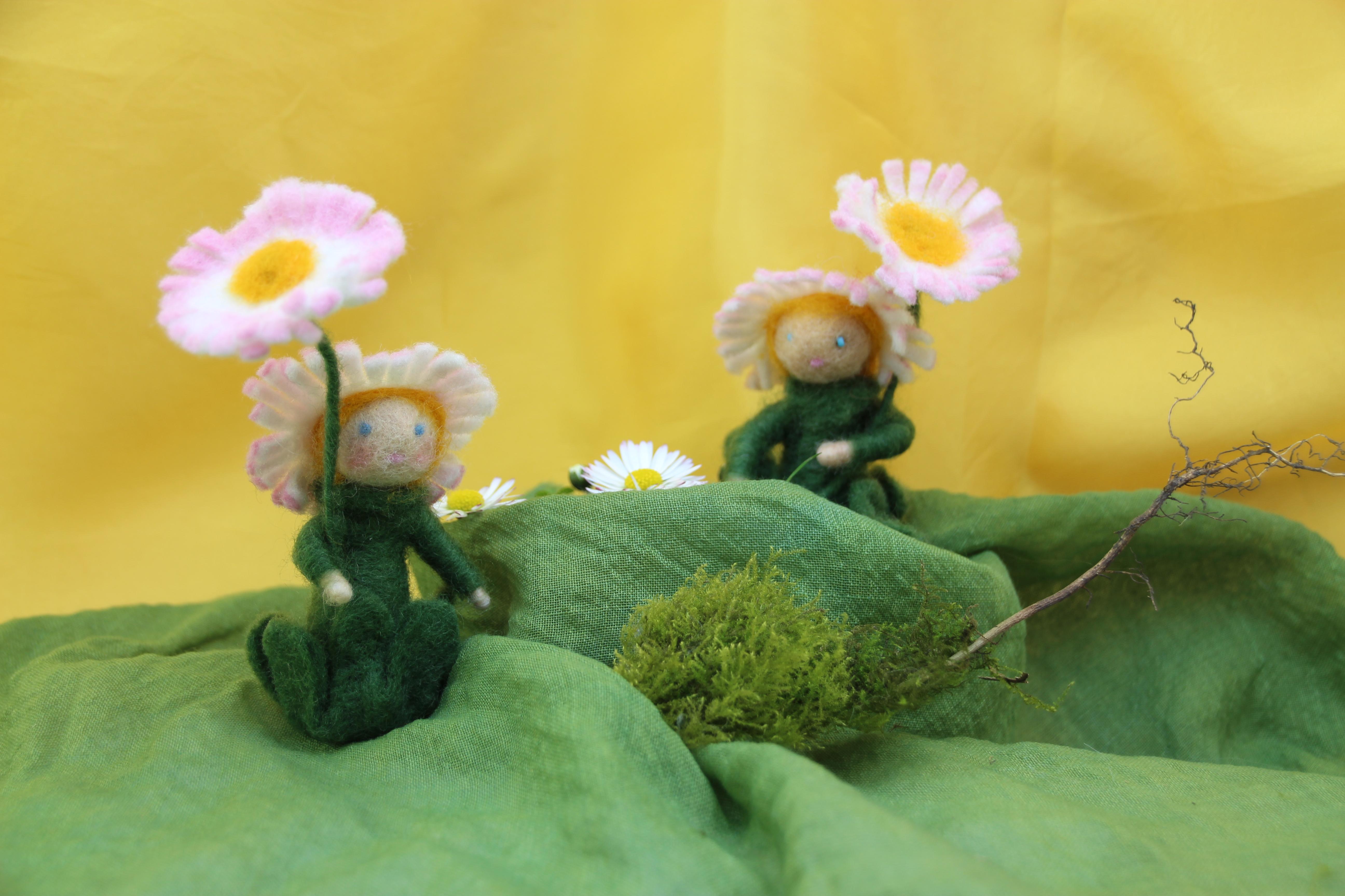 Bastelpackung Gänseblümchen aus Märchenwolle T&W